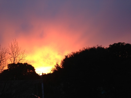 The sunrise from Chenery St., Dec. 14, 2012.