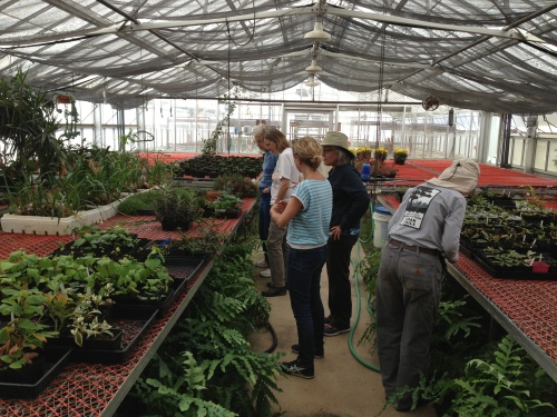 Friends of Glen Canyon Park volunteers taking a respite from their work and taking a short and guided tour of greenhouse nursery.