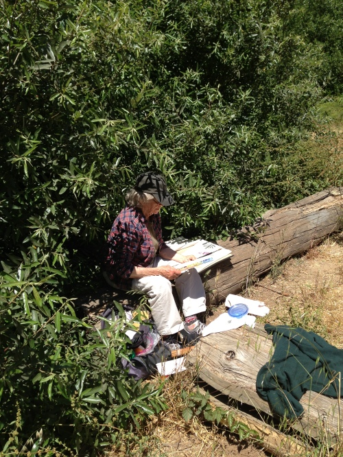 Margaret McGee, nearly hidden by willow branches, sketches a scene in Glen Canyon on June 13, 2013. Photo by Murray Schneider.