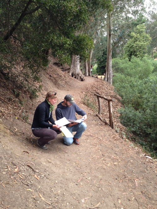 Melinda Stockmann and Joe Grey studying trail logs and maps on Banana Slug Way in early August. The railing to Grey's left will be replaced by a sutter wall.