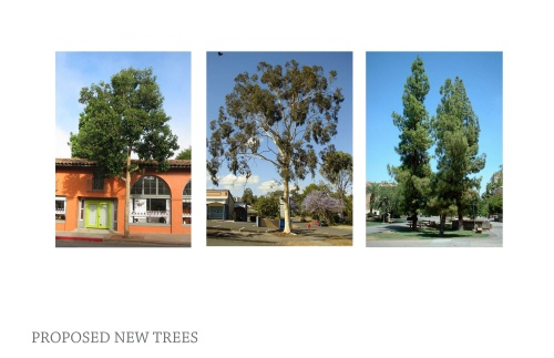 Proposed Trees.
