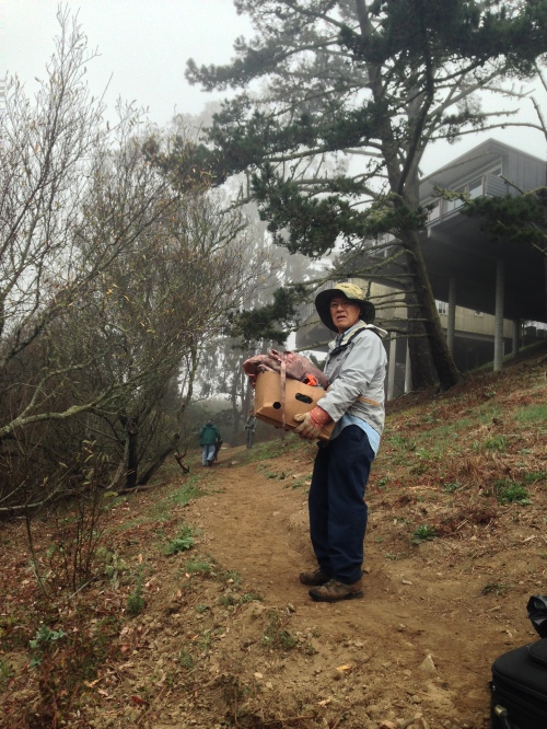 Friends of Glen Canyon Park, Steve Uchida holding a carton of homeless possessions while another volunteer, Jim Hanratty, wheels a barrow of debris along a canyon trail leading to the Diamond Heights Turquoise Way steps.