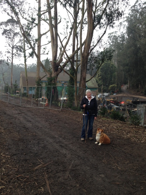 Joost Street resident, and Glen Canyon dog walker Kathleen Kelley pictured with Luna in front of two coastal redwood trees.