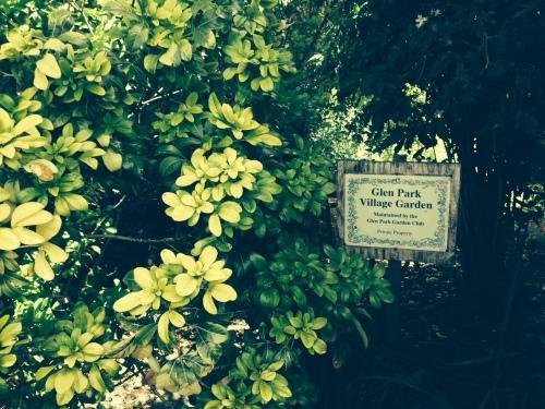 Glen Park Garden Club community garden on Diamond Street.