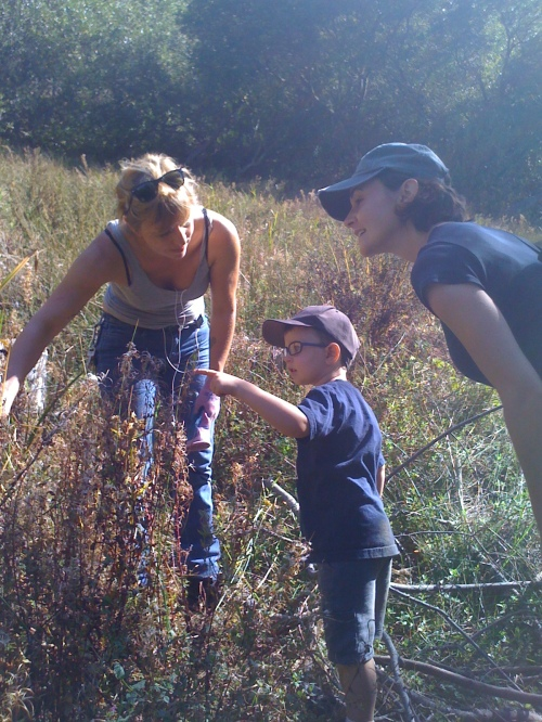 Jenny Sotelo, Rec and Park gardener, pointing out grasses to a little boy and his mother.