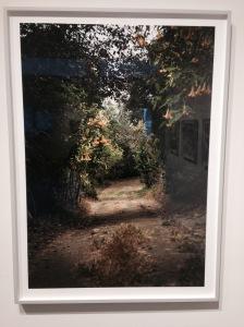 """Alley""  John Priola - 2014"