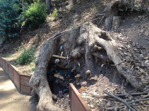 A eucalyptus tree trunk along Glen Canyon's Banana Slug Way is now home to elves, gnomes and fairies.