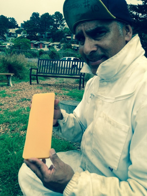 Fernando Aguilar holding a honey comb from his two beehives, used to make ECOSF hand balm.